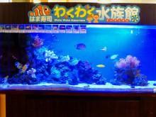 お寿司屋さんに水族館_640