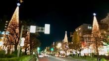 クリスマスツリー7:国立市_640