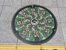 マンホール:タチアオイ・静岡市_640