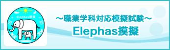 Elephas模擬